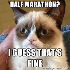 Oh Grumpy Cat you make everything better